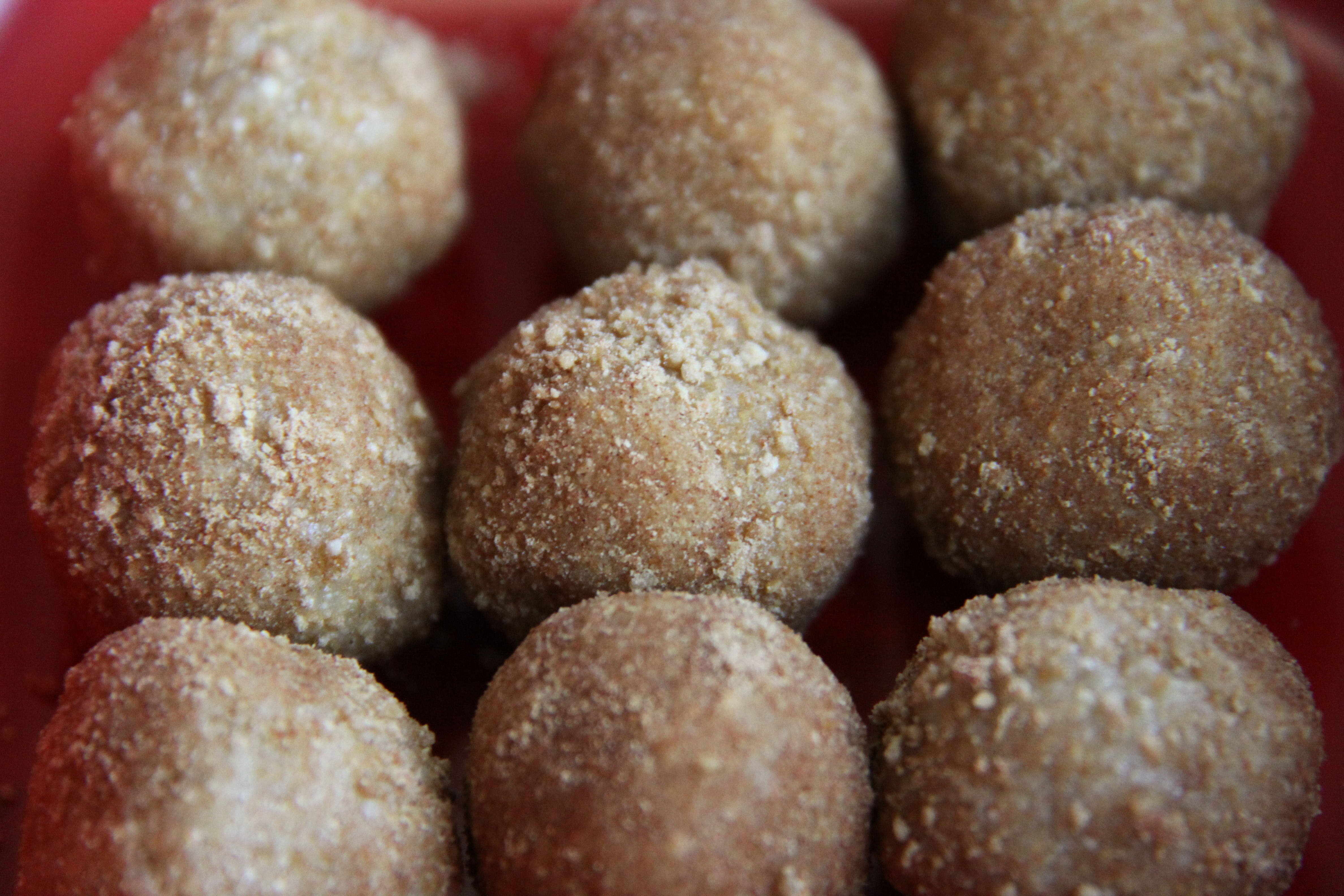 Cinnamon Donut Holes | Mama in the Kitchen