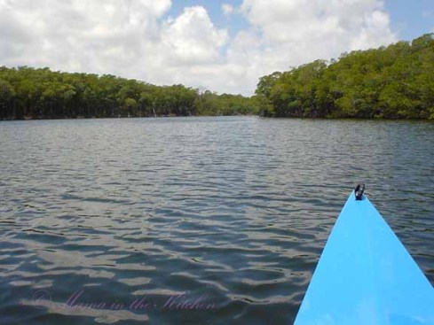 Kayaking on the Oleta Rivera in Florida