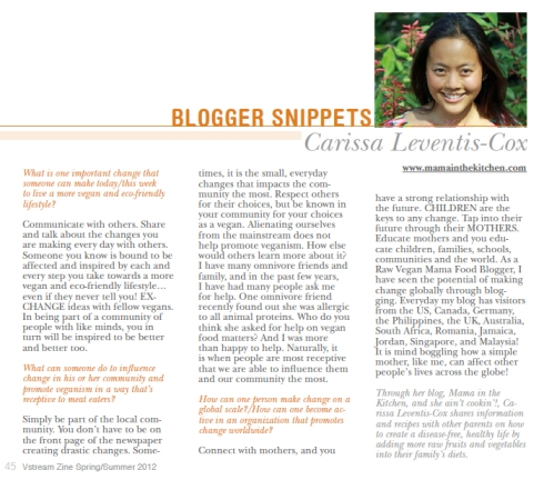 My Blogger Snippet in VStream's Spring/Summer 2012 Issue