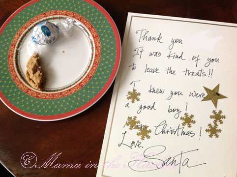 Our Xmas Experiment: will Santa prefer the processed candy the restaurant gave you or will he prefer the homemade Vegan cookies we baked?