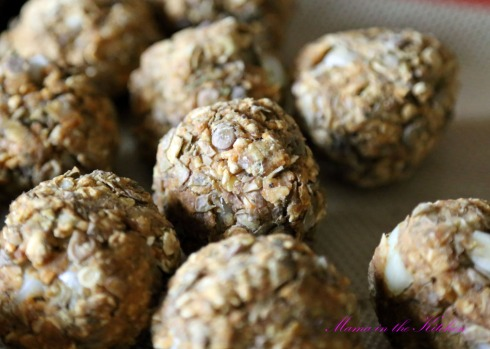 Vegan Meatballs 5