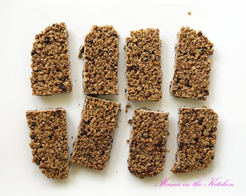 crunchy-vegan-double-chocolate-coconut-oat-bars